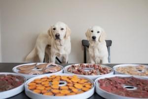 steps to make dog treats at home