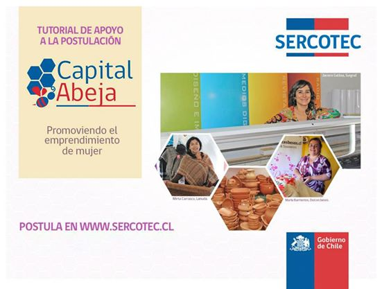 Tutorial Capital Abeja 2014
