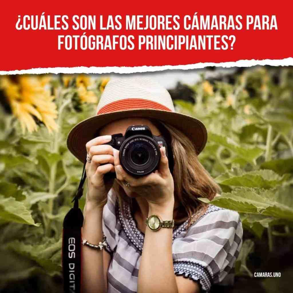 Las mejores cámaras para fotógrafos principiantes