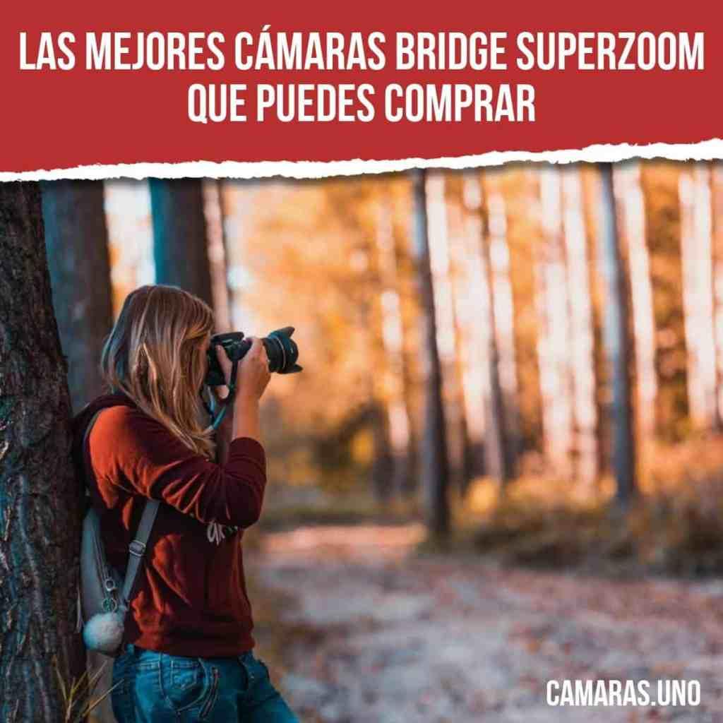 Las mejores cámaras bridge superzoom que puedes comprar