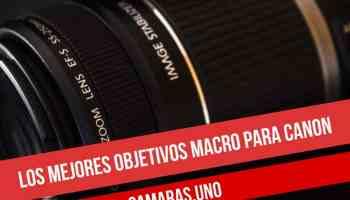 Los mejores objetivos macro para Canon