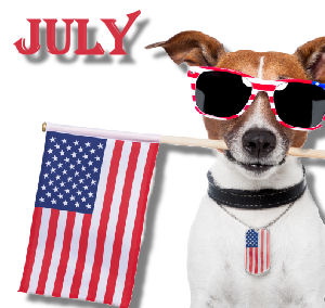 """July Is """"Fourth Of July Safety Tips For Pets"""" Month"""