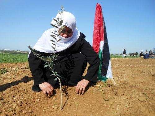 ¿Adiós palestinos?