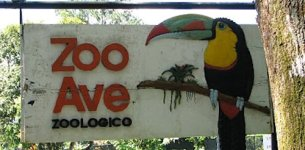 Historia de amor en Zooave