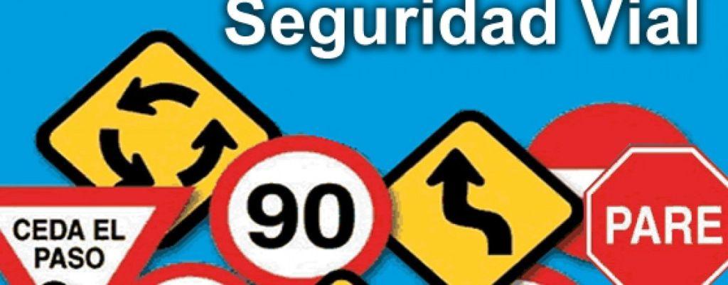 SEGURIDAD VIAL ESPAÑOLES