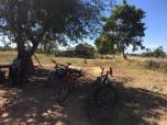 18-jan-cycling-lunch-shade