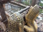 19-jan-depressing-croc