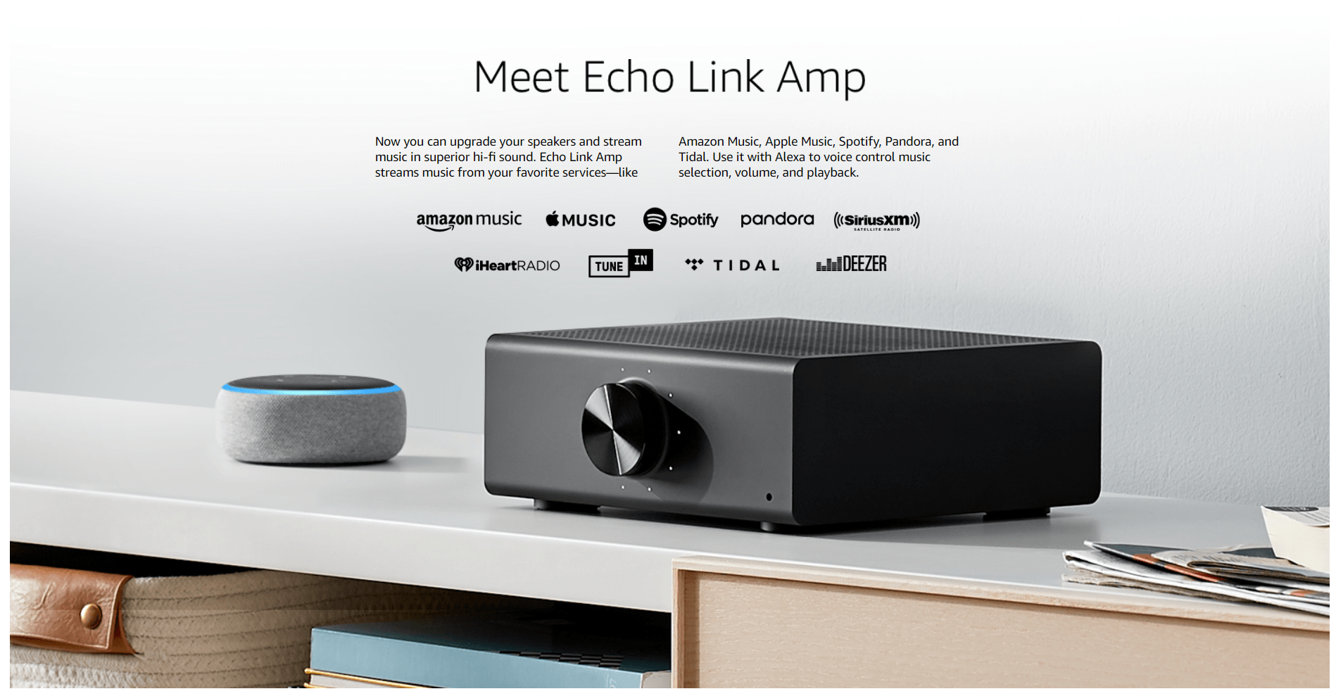 Stream hi-fi music to your stereo system Echo Link Audio