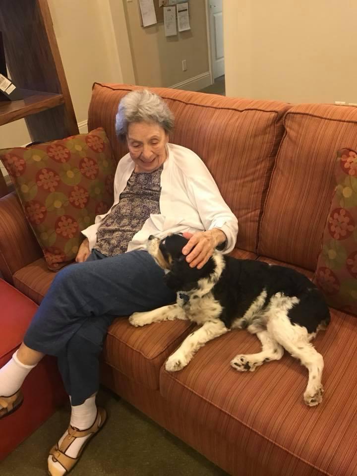 Cambridge Caregivers Dallas