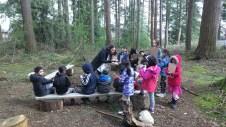 Exploring forest classroom