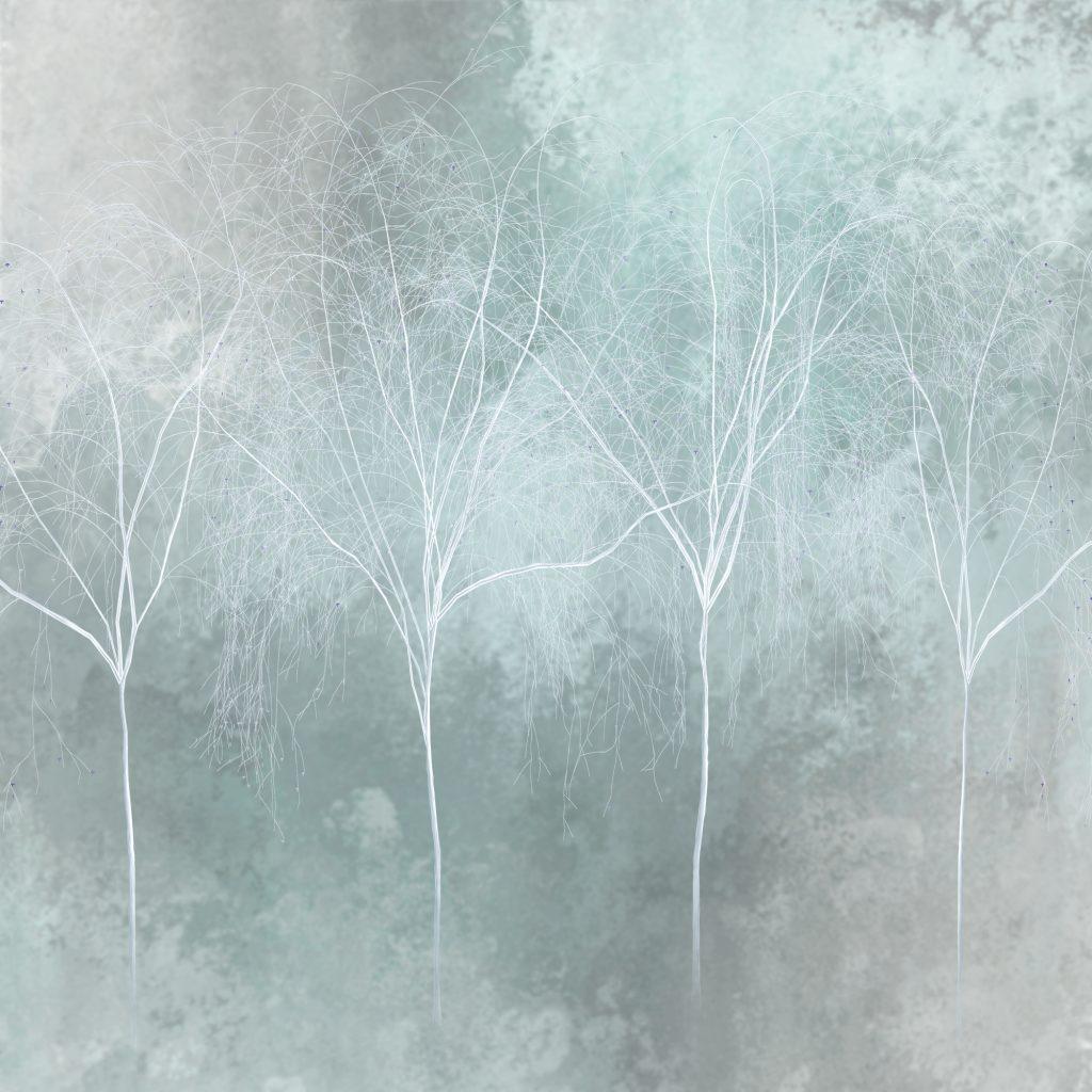 Enchanted Forest DIG211204 IMG 0558v1