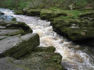 The Strid in full flow