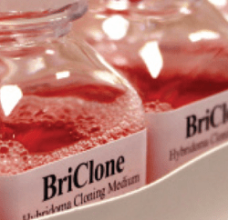 briclone bottle