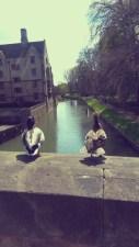 Ducks in deep conversation