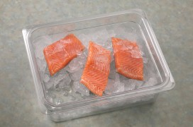 Colander w salmon