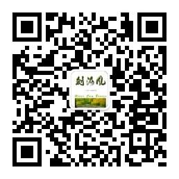 River Cam Breeze (Jian He Feng) Wechat Platform Code