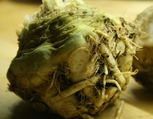 celeriac-camel csa