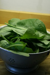 baby spinach-camel csa