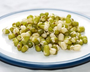 mung-beans-sprouted-camelcsa