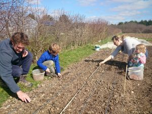 onion-planting-family-camelcsa-0315