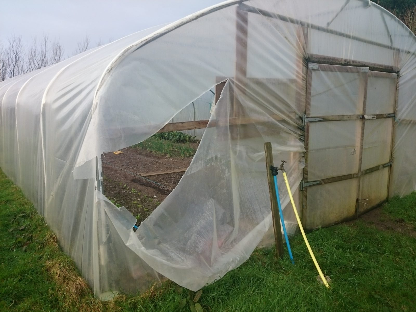 It\u0027s time to... camel community supported agriculture Camel CSA cornwall polytunnels st kew storm imogen & It\u0027s time to\u2026 repair the storm-damaged polytunnels @ Camel Community ...