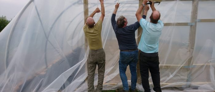 first-polytunnel-treraven-camelcsa-2019