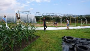 cover-second polytunnel-treraven-camelcsa-1-010819