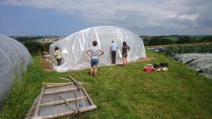 cover-second polytunnel-treraven-camelcsa-5-010819