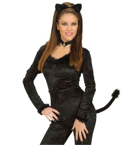 kit chat noir