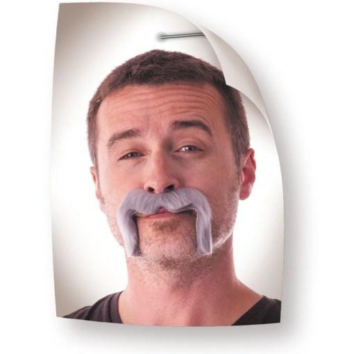 moustaches Watson grise
