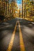 jeremy-fall-20-back-road