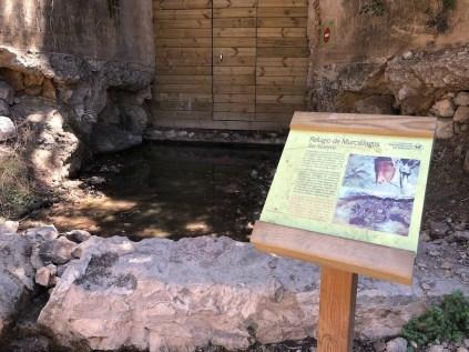 Bat Reserve
