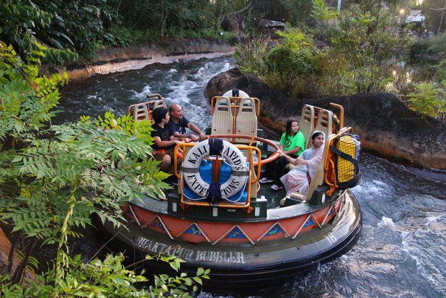 Orlando's amusement parks - Disney Animal Kingdom