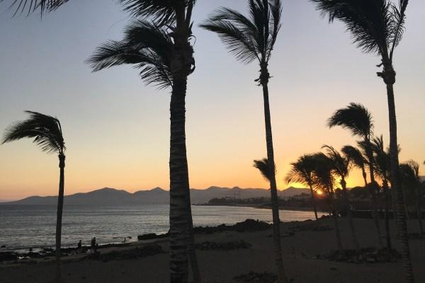 Guide to Puerto del Carmen