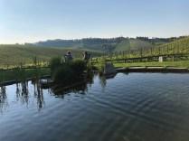 Eco lake for swimming