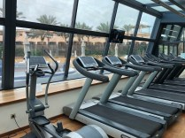 Cardio machines in the gym