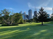 Peaceful green space in the heart of Sydney