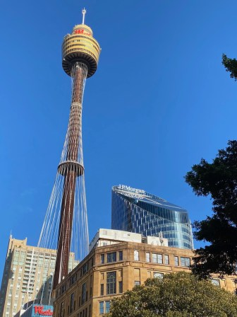 Sydney Tower in the heart of the CBD