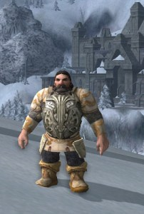 Heavy Armor -- picture from LOTRO Store web page
