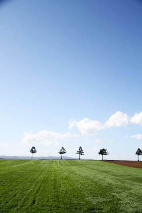 大空町のメルヘンの丘