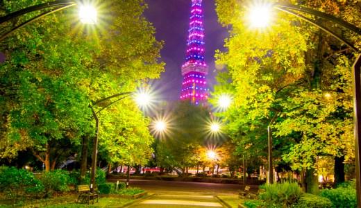 東京タワー絶景スポットで撮影