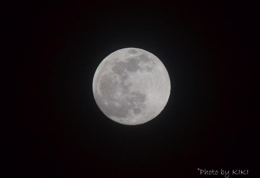 オリンパスPENで月撮影