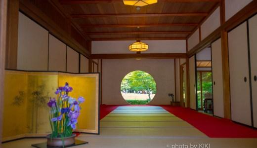 悟りの窓とアジサイのお寺 明月院を撮る