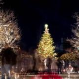恵比寿 クリスマスツリー