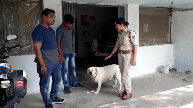 Bina Police