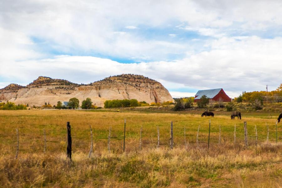Barn with horses in Utah