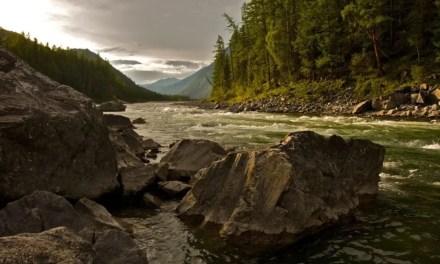 LandscapePro software seeks your unedited landscapes