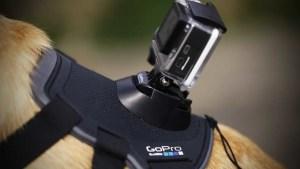 GoPro accessories - GoPro Fetch