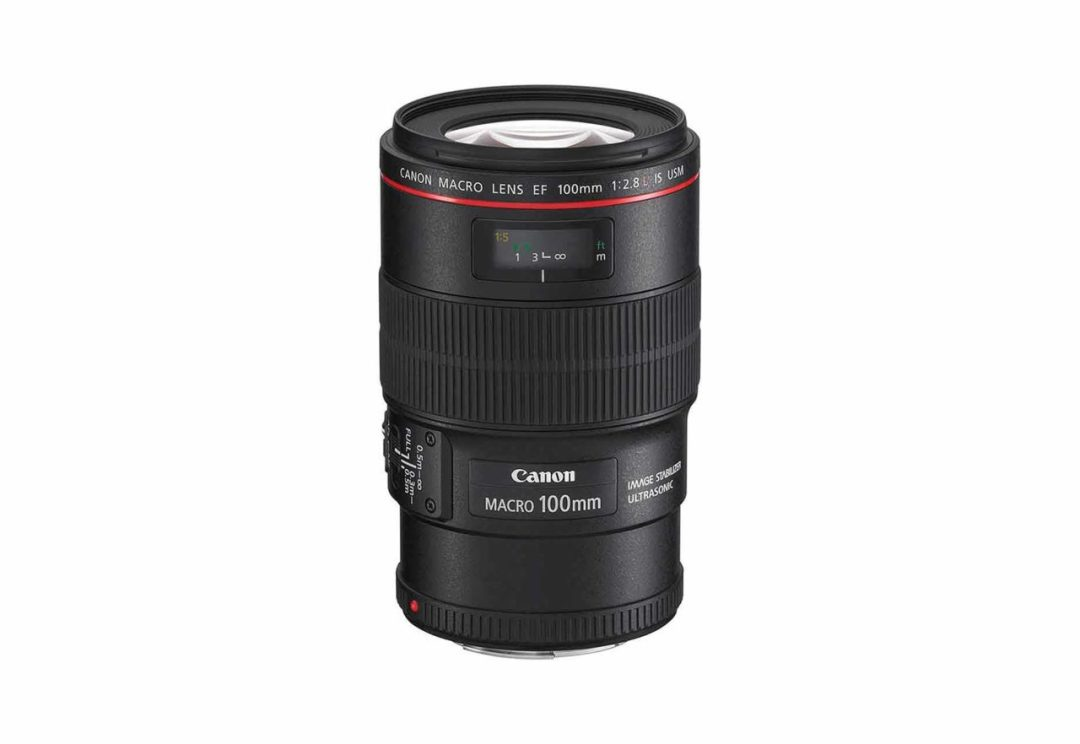 Best Canon EF lenses: 07 Canon EF 100mm f/2.8L Macro IS USM, £620
