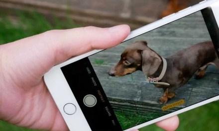 iPhone 7 Plus Camera Review